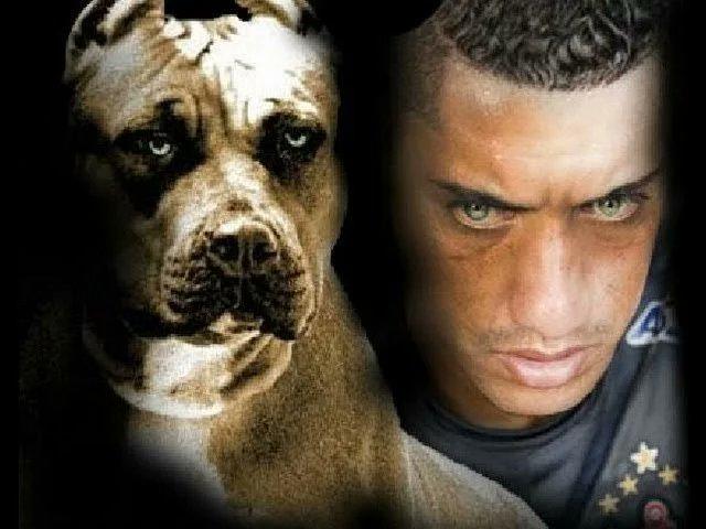 Seja muito bem vindo cão bravo o verdade...