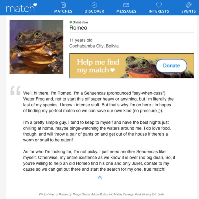 Romeo online datingick faktor dating