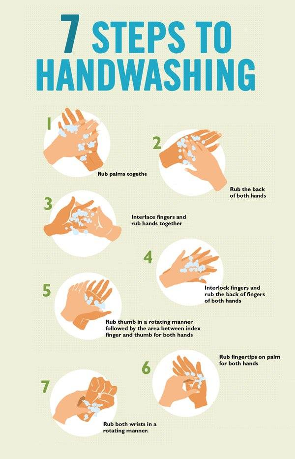 Hand Washing Hygiene Global Handwashing Day Norovirus Soap Manual Guide