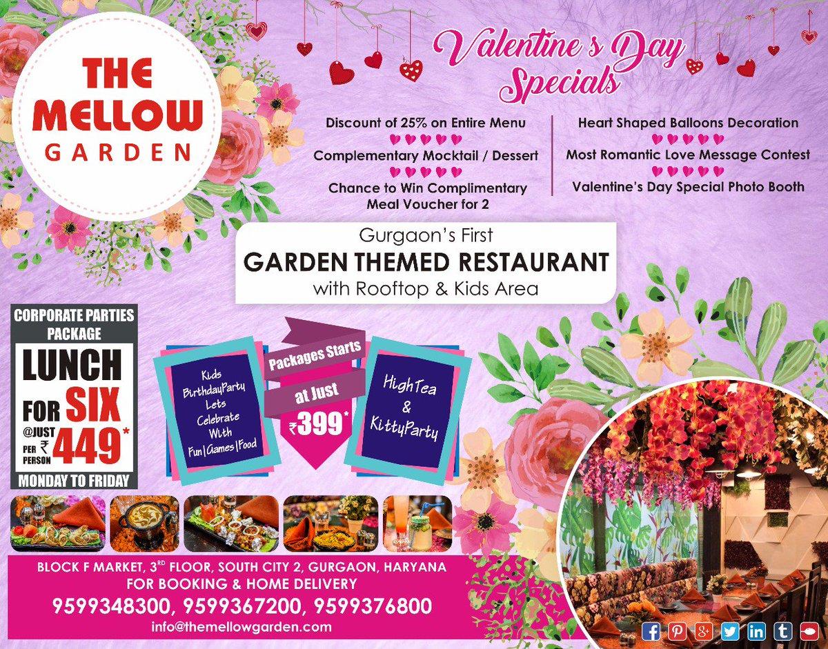 The Mellow Garden on Twitter: