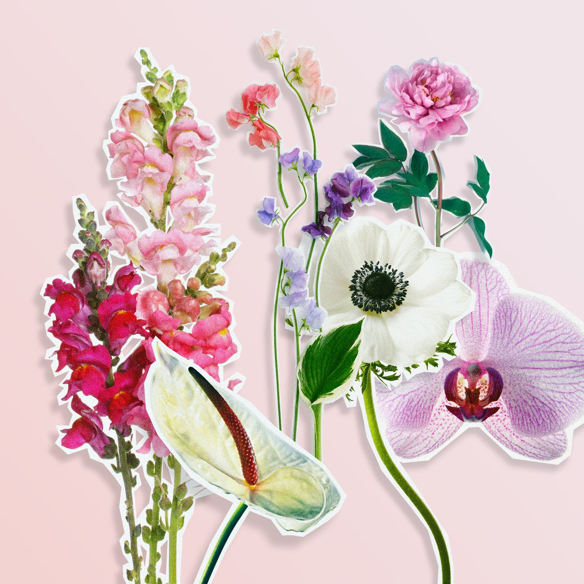 Brides On Twitter 15 In Season May Flowers For Your Spring Wedding