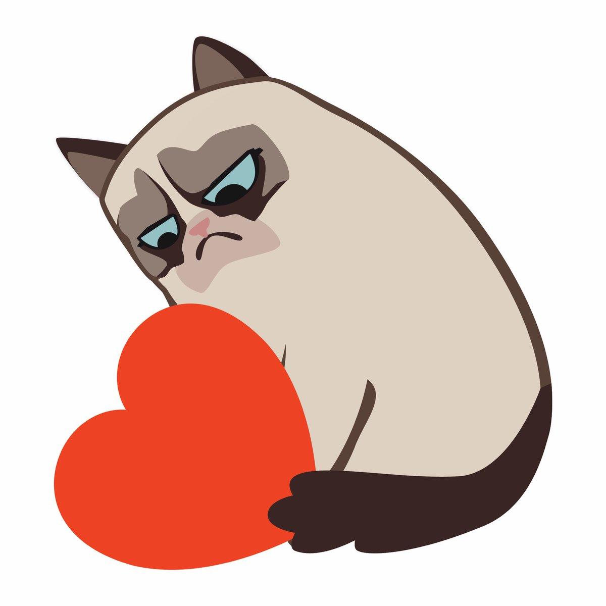 Grumpy Cat (@RealGrumpyCat) on Twitter photo 2018-02-14 00:07:08