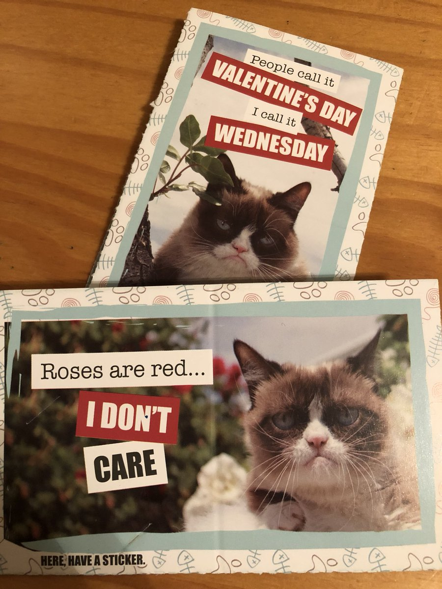Carter is 10 and already knows where he stands on #ValentinesDay2018 @RealGrumpyCat!