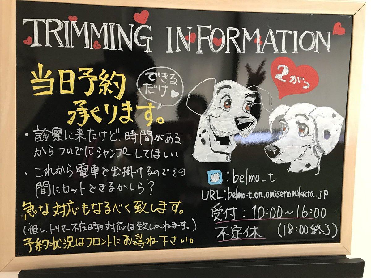 EXAMPLE × DISNEY「眠れる森の美女」「101 匹わんちゃん