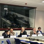 Discussing the findings of Theory and Practice of #smartspecialisation in less developed regions with notably @Slavo_Radosevic & @PeterBerkowitz1 - seminar hosted by @EU_Regional Smart Growth unit