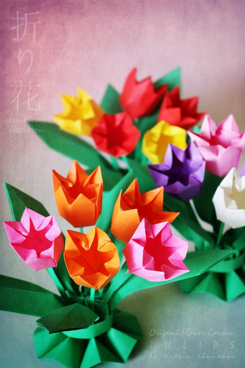 Oriland On Twitter Dreaming Of Spring And Lovely Tulips In Our