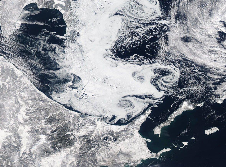 北海道沖に流氷きてる. 衛星でハッキリ塊になってる流氷が見える.ヒゲみたいにのびていたり,回転して海流を可視化しているものも.自然ってすごい.