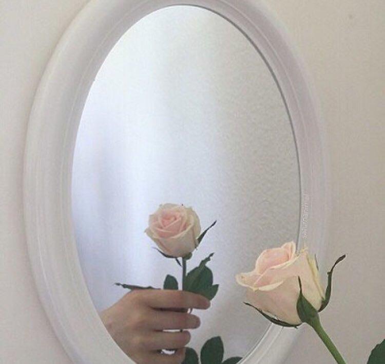 Aestheticchard On Twitter Rose Rose Roses Aesthetic