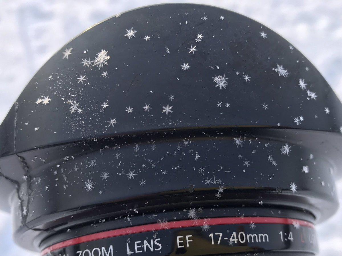 だいぶ長く生きてきたけど、降ってきた雪が結晶になってるの初めて見ました。マイナス20度以下の極寒で全然溶けないからか、雪の結晶が肉眼で普通に見れました。いっぱいの雪の結晶わかりますか?とても綺麗でしたよ(*´∀`*)