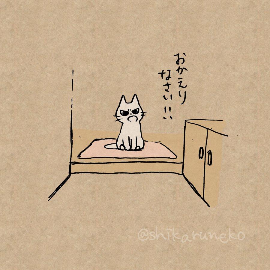寄り道などしてるうちに帰りが遅くなってしまう人を叱ってくれる猫