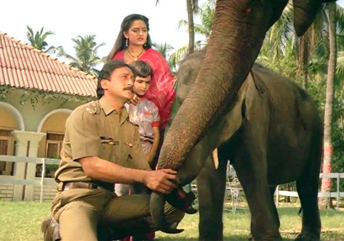 Image result for sridevi elephant