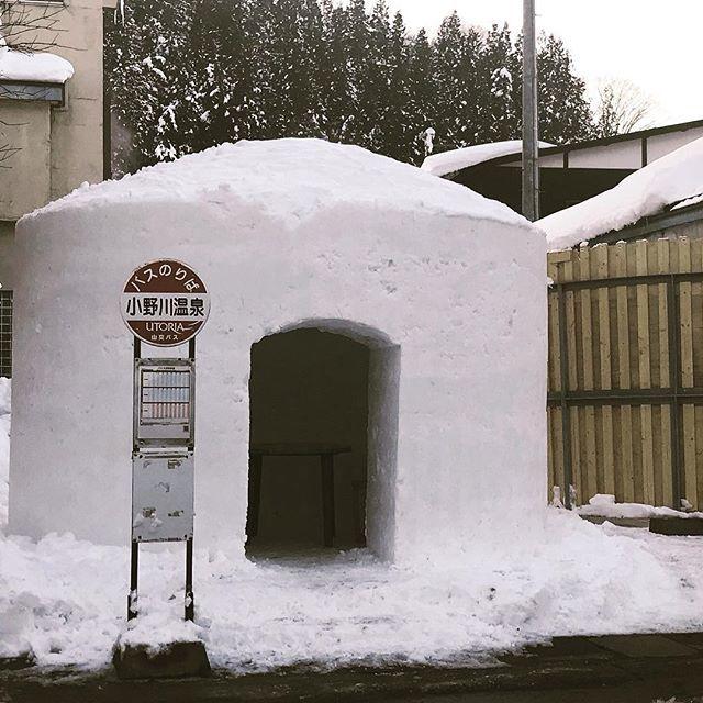 バスを待つなら、かまくらで。お腹すいてるなら、ラーメンも出前できます。 #小野川温泉 #近いよ米沢 #snow #busstop #かまくら https://t.co/ViC6NMvJXa