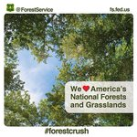 Happy #ValentinesDay from the National Forests in Florida. #forestcrush