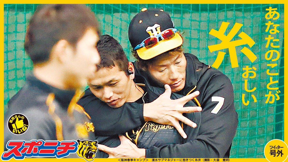 【#プロ野球】#大阪の面担 やで!「#面担さんのいいね」、今日は昨日の糸井にいいね!清水サブマネジャーに抱きつく糸井。愛情表現?#阪神 #hanshin #スポニチ