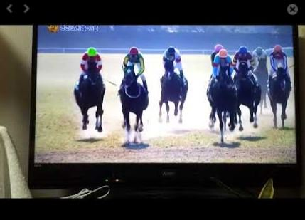 競馬動画: 2018きさらぎ賞 GⅢ サトノフェイバーが逃げ粘りました https://t.co/NsAxde6XHZ …