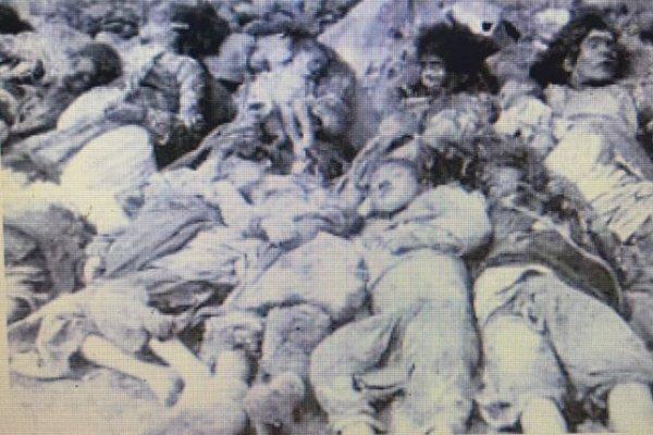 'نورة شنار': جرائم العثمانيين لم تقتصر ع...