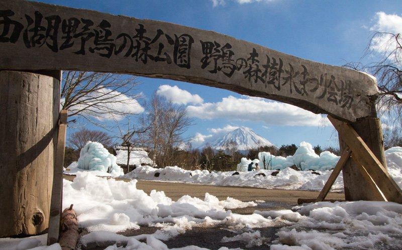 西湖樹氷祭り。2月4日撮影。蔵王の樹氷ツアーをキャンセルしたので、こちらの樹氷を見てきました(^_^)。サイトはこちらなどをどうぞ。4枚目は会場外の道路(歩道)からです。 https://t.co/hY7scGaNUc #富士山 #西湖 #樹氷祭り https://t.co/O6LWShCRIU