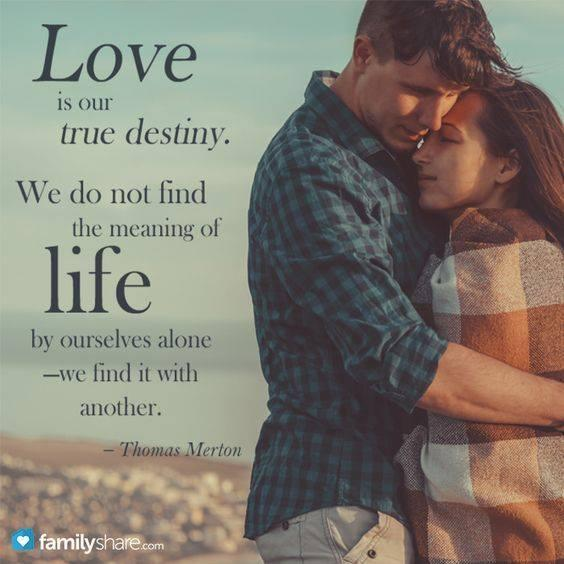 Famifi On Twitter Love Is Our True Destiny We Do Not Find The