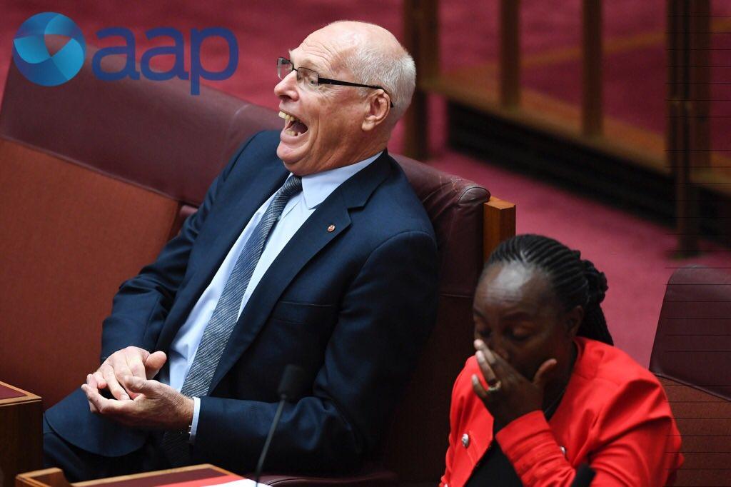 New Liberal Senators Jom Molan (left) an...