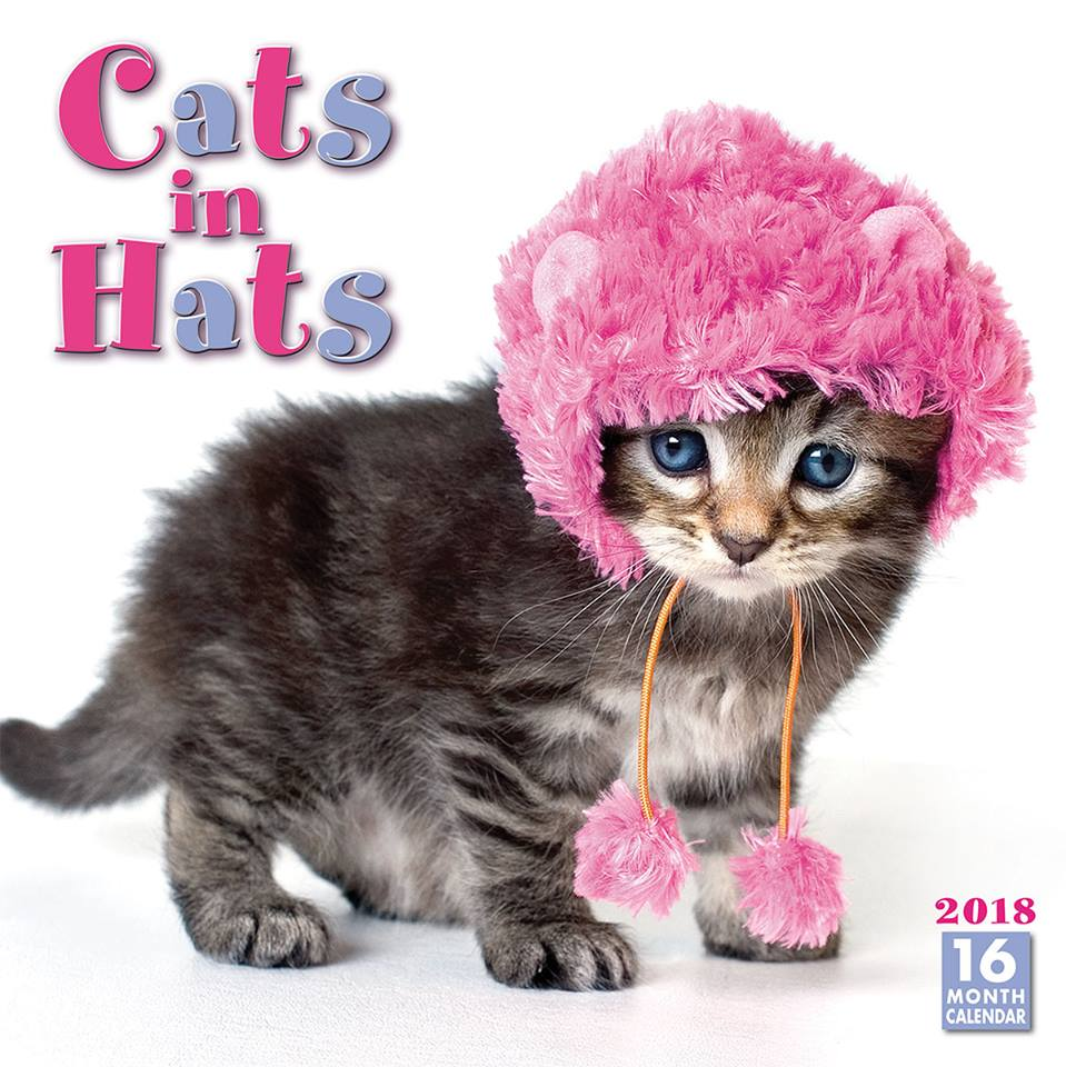 We love stylish cats in hats. Calendar © Sellers Publishing Cover image © 2017 Cindy Pitts. 30% off all our 2018 calendars with coupon code CAL30 at checkout. rsvp.com #Calendars #218Calendar #catsinhats #catlovers #catsinfunnyhats #catsoftwitter #couponcode