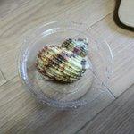 まるで真珠のよう! ただの貝殻を簡単に真珠色にする方法がスゴイ!