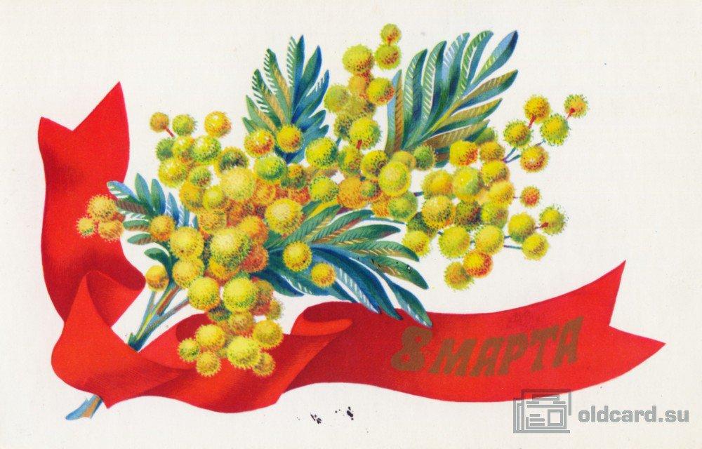 Елена шмелева открытка мимоза показать ее, картинки