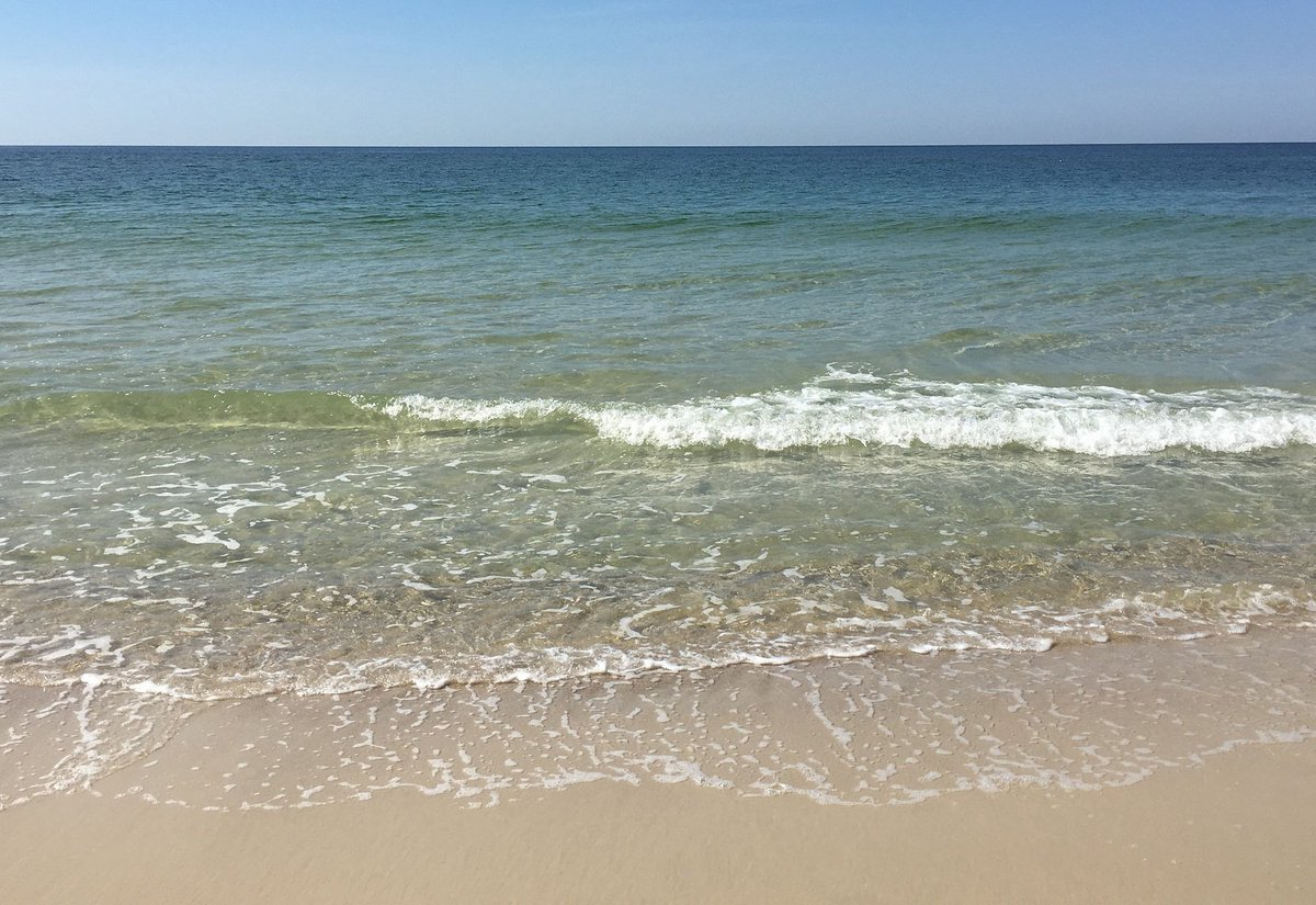 Stunning Hilton Garden Orange Beach Pictures Inspiration - Beautiful ...