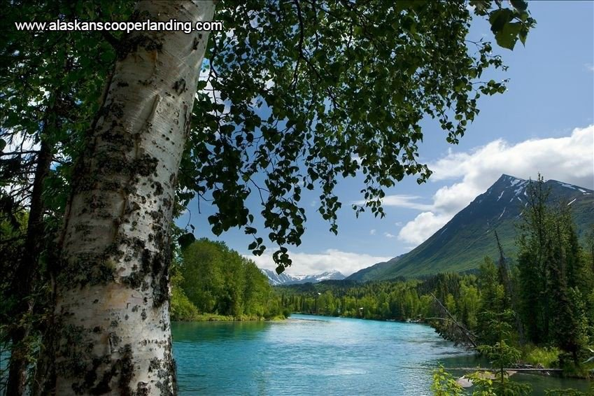 Incroyable ... Cooper #Vacation Landing Lodging #cabins, Kenai #River Vacation Rentals,  Luxury Family #Holiday Vacation Twin Lakes Cabins Alaska. ...