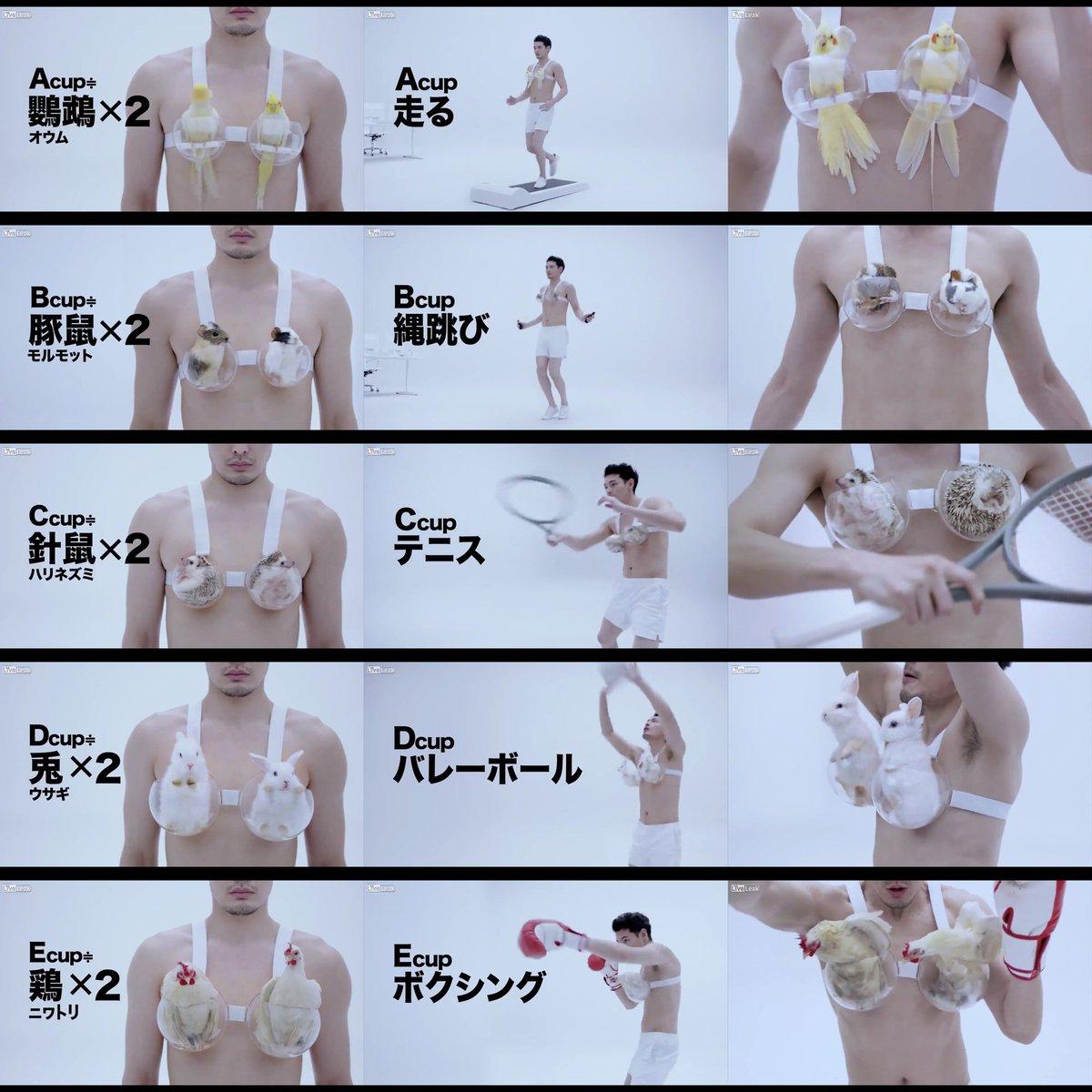 【動画】おまいら大好きなおっぱいの重さ知ってんのかwwww