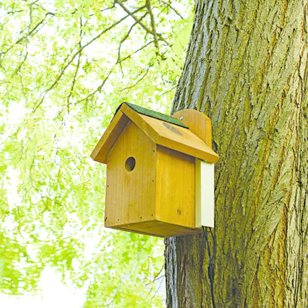 To celebrate #NationalNestboxWeek were giving away a #Gardman #BirdNest box with camera view (worth £59.95). The camera allows you to watch garden birds from the comfort of your living room 👀💚 Simply #Follow our page & #RT to enter. Comp ends 22/02/18 #Competition #comp #win