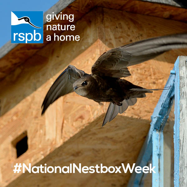 Its #NationalNestboxWeek! Do your bit to help the birds in your garden by creating some #homesfornature! natu.re/11PrXJ @_BTO