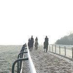 Another very crisp morning at @omeararacing #summerwillsoonbehere #happystaff