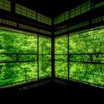 綺麗な風景写真を撮るなら?デジタルカメラのPENTAXで撮られた緑は美しい♪