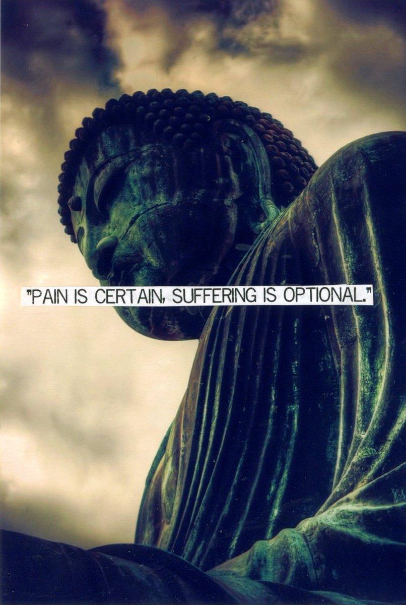 Buddha Quotes Tumblr Custom Yoga Quotes Quotesyoga  Twitter