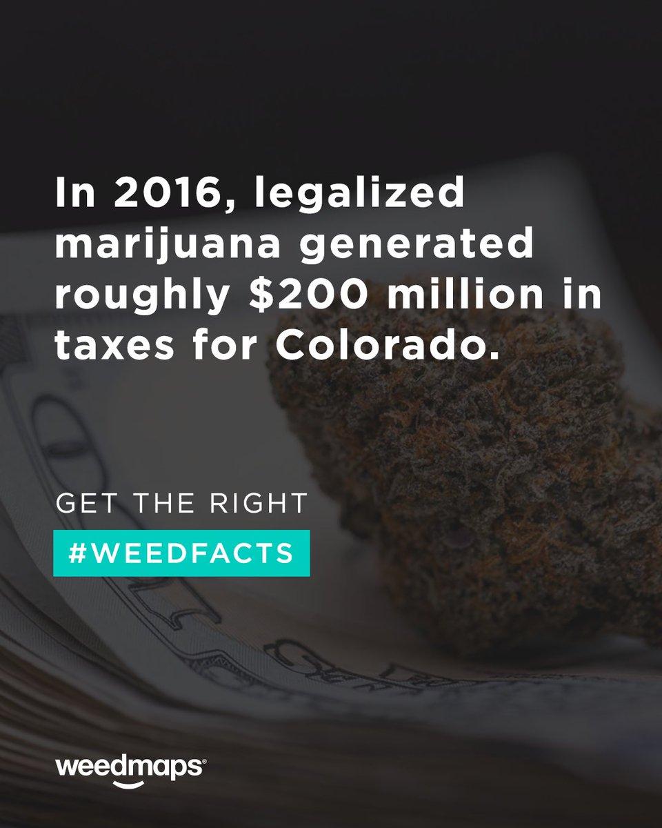 get the right weedfacts from the right place httpsweedmapscomweedfactspictwittercomqxhvjtomv. weedmaps (weedmaps)  twitter