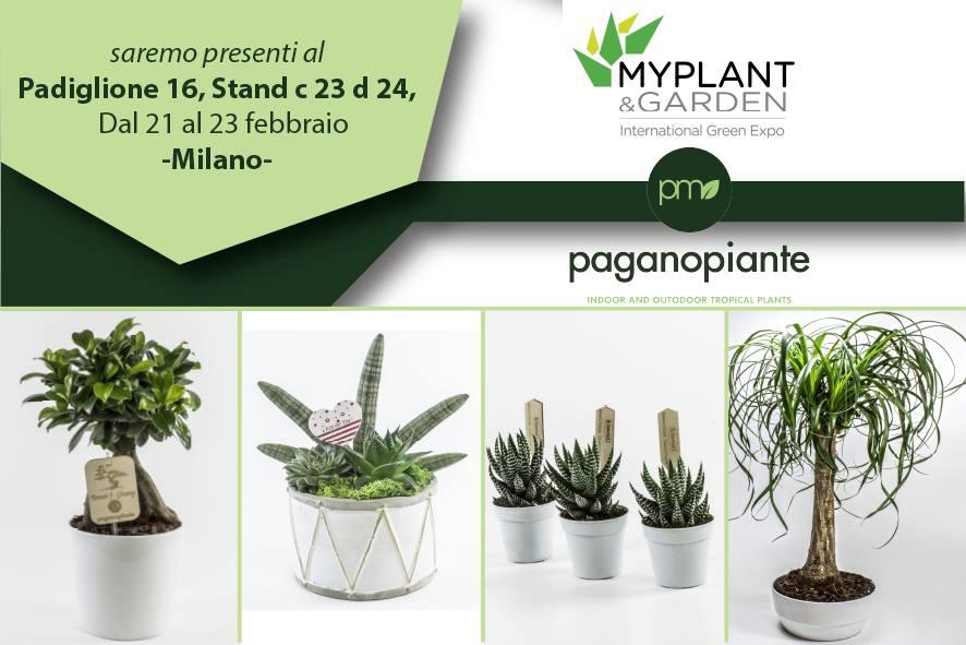 Dal 20 al 21 febbraio vieni a trovarci al @MyplantGarden per scoprire le novità #Paganopiante per trovare nuove idee con cui sorprendere i tuoi clienti #Myplantgarden #gardening #fieradelverde https://t.co/N489yNIjyq