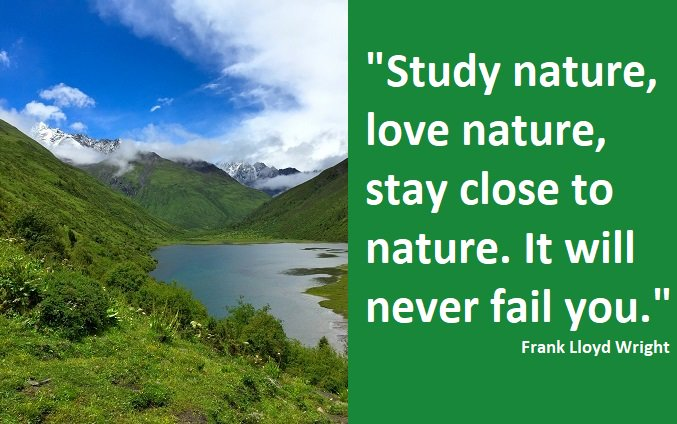 Environmental Quotes On Twitter Study Nature Love Nature Stay Close To Nature It Will Never Fail You Environment
