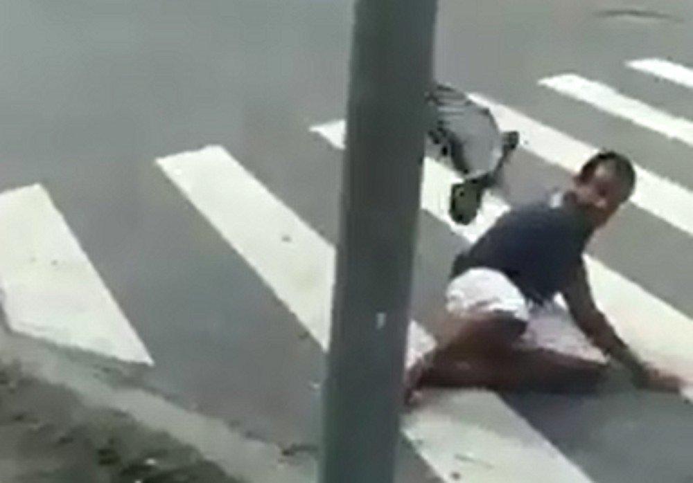 Pomba 'se revolta' e persegue homem no litoral de São Paulo https://t.co/RHTP2oTyBO #G1
