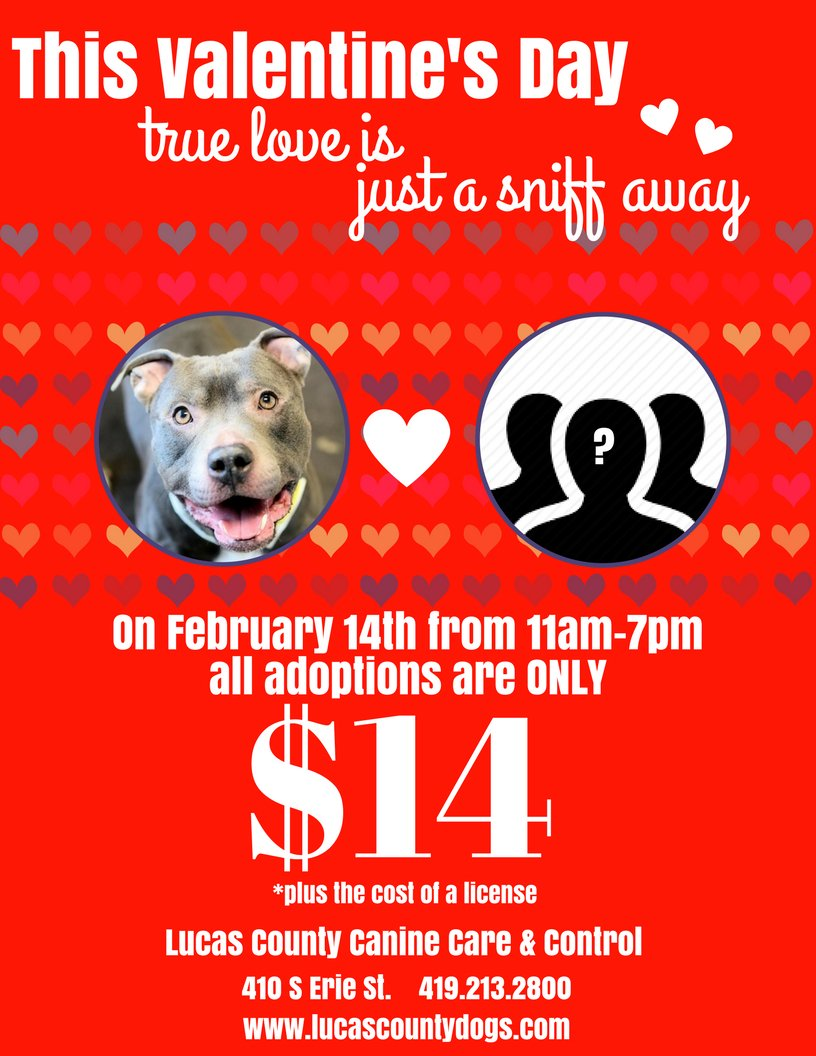 bf561349ebb For one day ONLY all dog adoption fees are only  14 (plus a license). So  many loving pooches don t want to be alone this Valentines  Day!