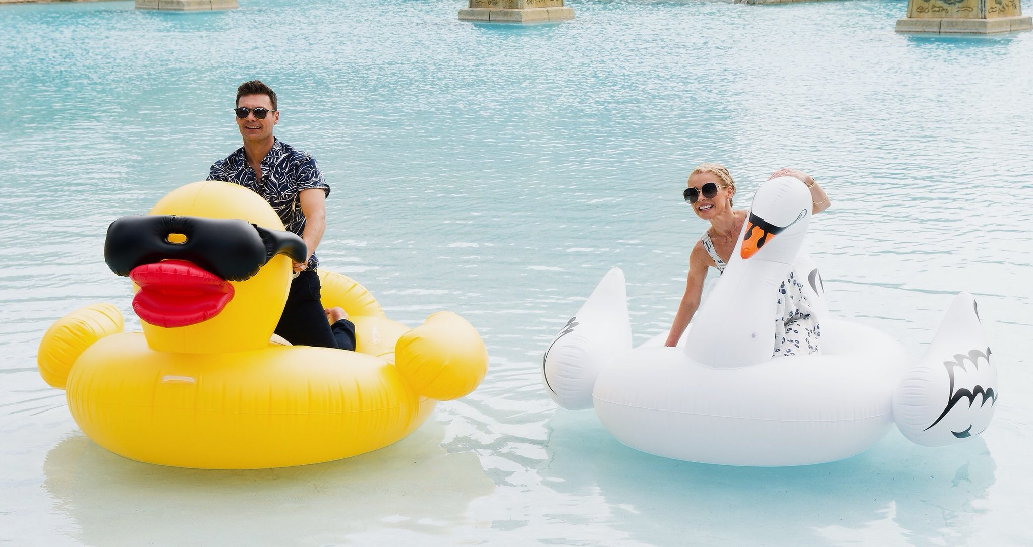 #TrifleTheDiscoSwan made it to the Bahamas and found a new friend! #kellyandryanatlantis #itsbetterinthebahamas https://t.co/NV43iIE0gD