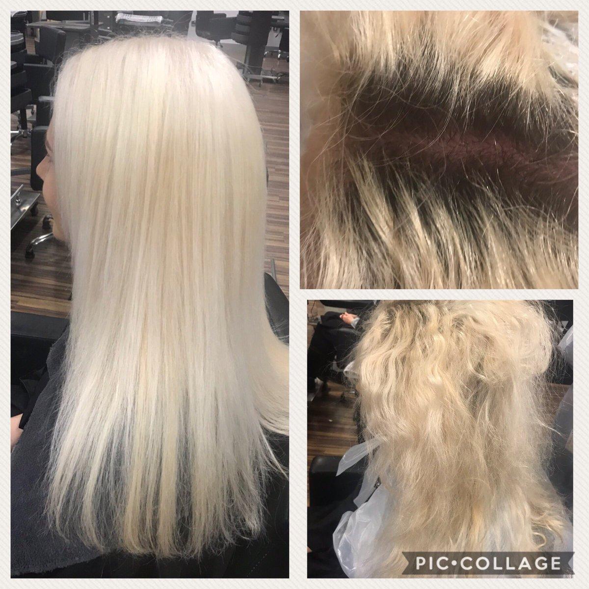 Blondor Hashtag On Twitter