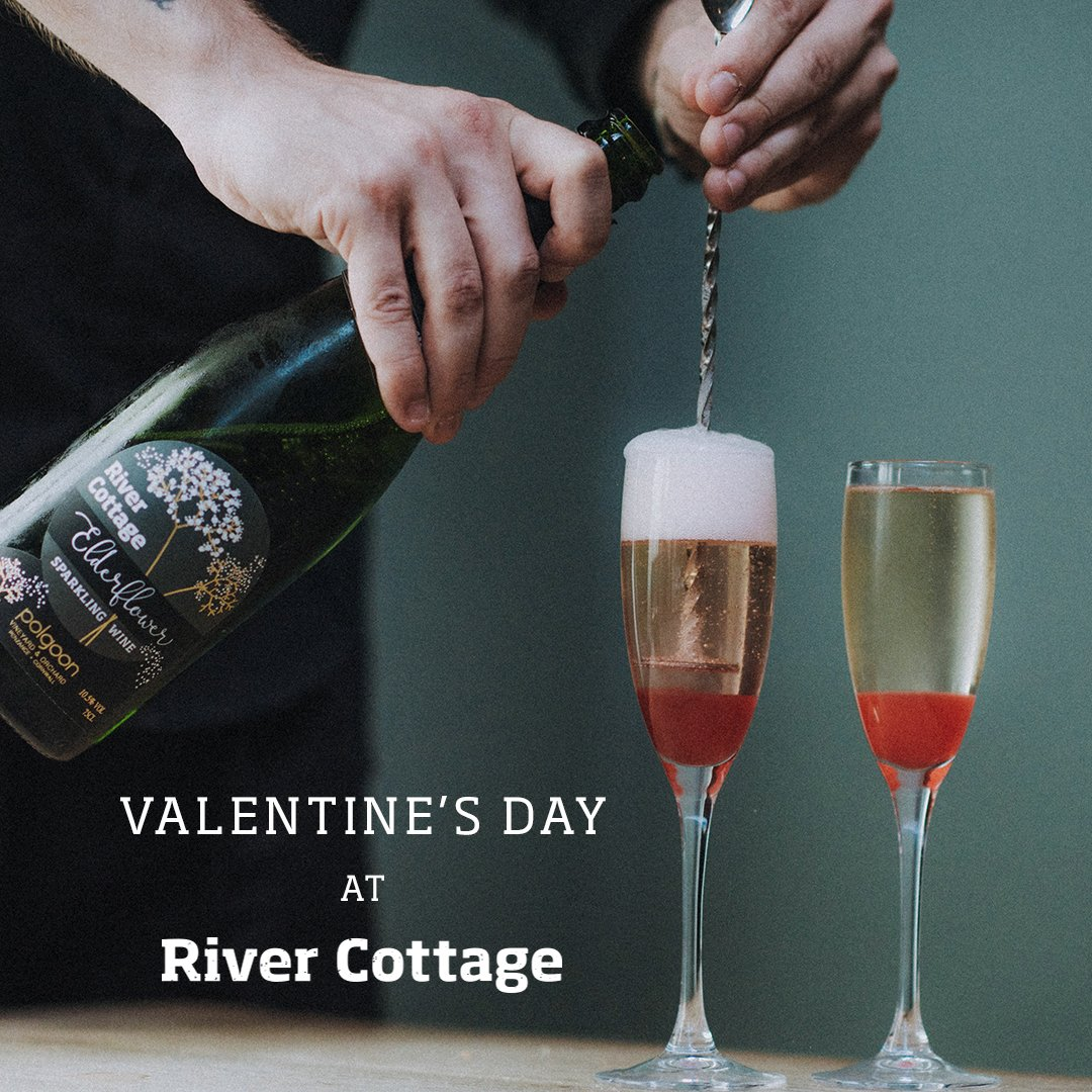 how to make elderflower wine river cottage