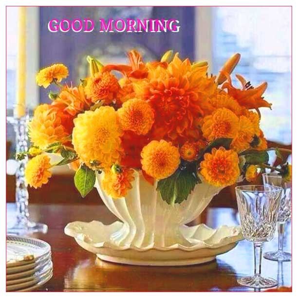 Rani Gill On Twitter Goodmorning Morning Flowers Feb Month Nearlyweekend Wow Fresh Day Happy Morning New Day Friday 9th Feb Newday New Day Welcome Hope You All Got A Wonderful