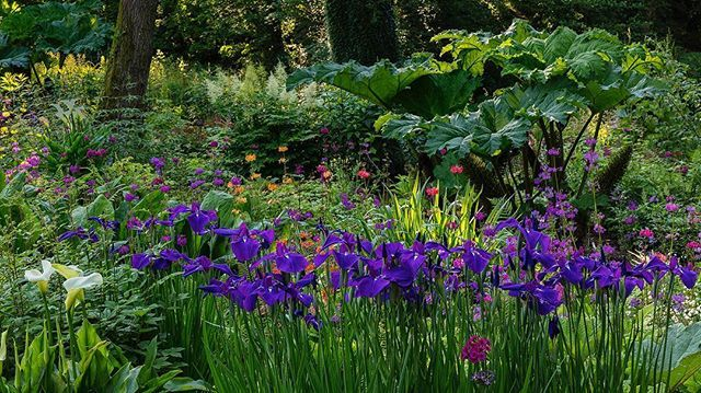 Aberglasney Gardens on Twitter: \