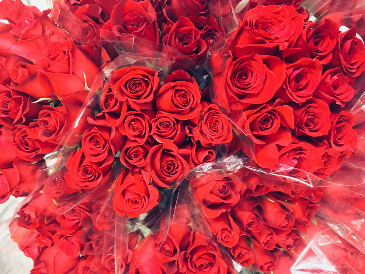 Royer\'s Flowers (@royers) | Twitter