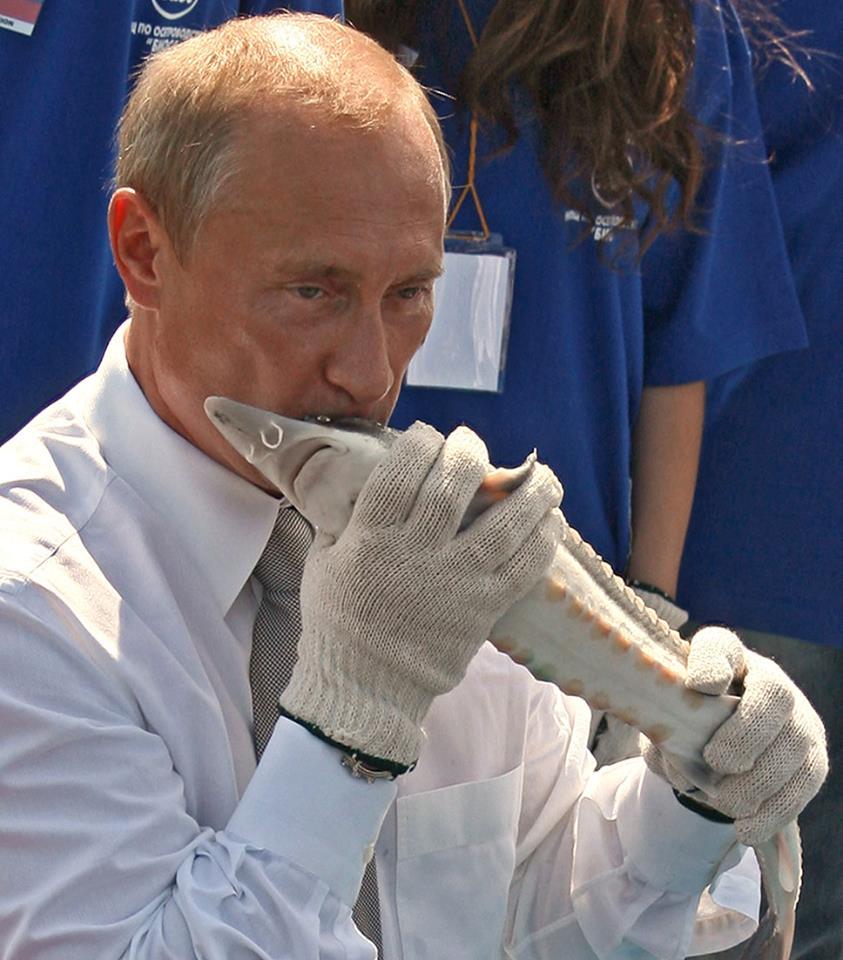 Російський олігарх Дерипаска подав до суду на повію, яка написала книгу про секс із ним і віце-прем'єром РФ Приходьком - Цензор.НЕТ 986