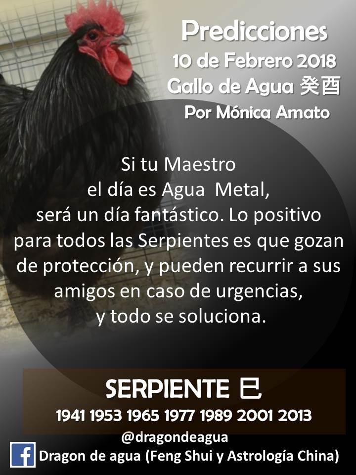 Mónica Amato on Twitter: