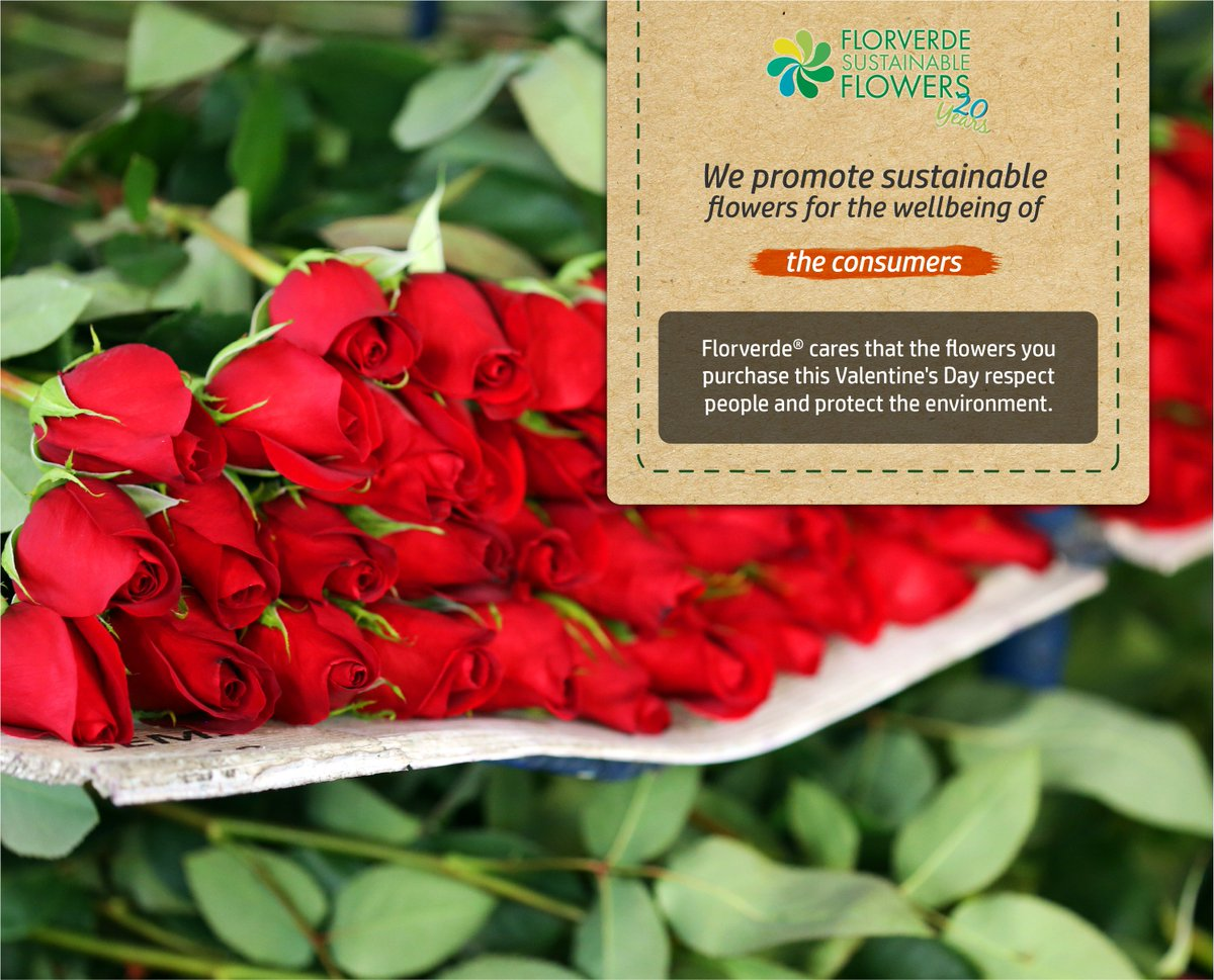 Florverde on twitter purchasing responsible produced flowers florverde on twitter purchasing responsible produced flowers guarantees good labor conditions for flower workers and protection to the environment izmirmasajfo