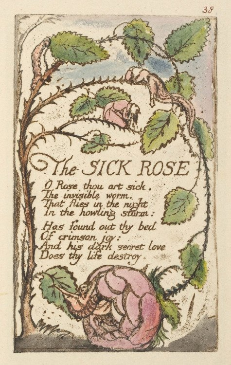 red red rose by william blake Technical analysis of a red, red rose literary devices and the technique of robert burns.