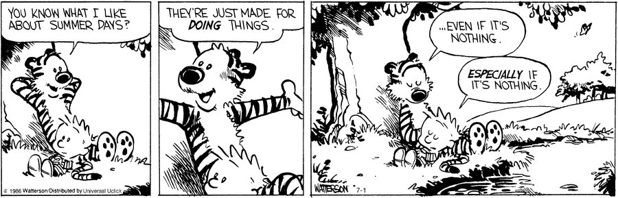 Image result for calvin and hobbes summer days